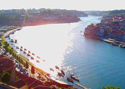 Day tour of Porto
