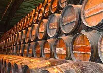 Paseo por Azeitão Arrábida Palmela con cata de vinos – 8h